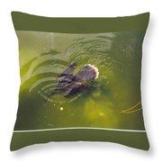 Anhinga Or Snake Bird Throw Pillow
