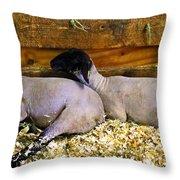 3 Animals Throw Pillow