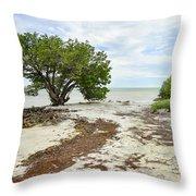 Anne's Beach-3 Throw Pillow