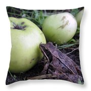 3 Apples And A Frog Throw Pillow