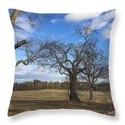 3 Appleton Trees Throw Pillow