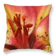 Arsenal Lily Throw Pillow