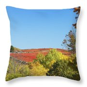 Autumn Colors In Maine Blueberry Field And Forest Throw Pillow
