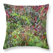 Autumn Meadow Throw Pillow