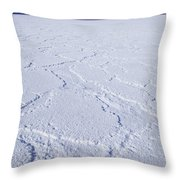 Badwater - Death Valley Throw Pillow