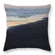 Beach Sunset Ormond Beach Throw Pillow