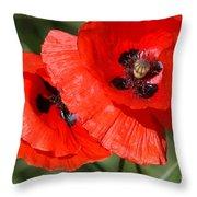 Beautiful Poppies 2 Throw Pillow by Carol Lynch