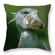 Bec En Sabot Du Nil Balaeniceps Rex Throw Pillow