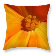 Begonia Named Nonstop Apricot Throw Pillow