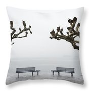 Benches And Trees Throw Pillow