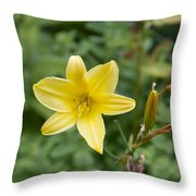 Beth Chatto Gardens Throw Pillow