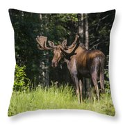 Big Fella Throw Pillow