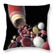 Blood Vessel With Cells Throw Pillow