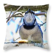 Blue Jay With Bread  Throw Pillow