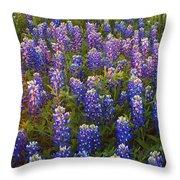 Bluebonnets At Sunset Throw Pillow