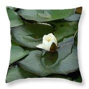 Budding Spirituality Throw Pillow
