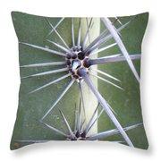 Cactus Thorns Throw Pillow