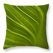 Calla Lily Stem Close Up Throw Pillow