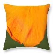 Canna Lily Named Wyoming Throw Pillow