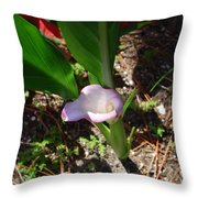 Canna Lily Throw Pillow