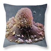 Carcinoma Cell Apoptosis Throw Pillow
