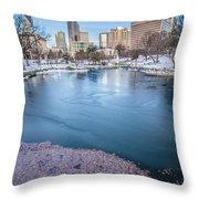 Charlotte North Carolina Marshall Park In Winter Throw Pillow