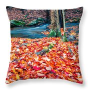 Chesterfield Gorge New Hampshire Throw Pillow