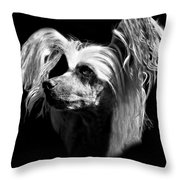 Chinese Crested Hairless Throw Pillow