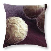 Chlamydia Bacteria Throw Pillow