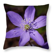 Common Hepatica Throw Pillow