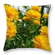 Coreopsis Named Early Sunrise Throw Pillow