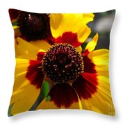 Coreopsis Or Golden Tickseed Throw Pillow