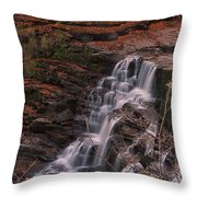 Corra Linn Throw Pillow