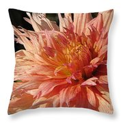 Dahlia Named Intrepid Throw Pillow