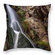 Darwin Falls Throw Pillow