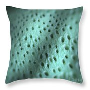 Dentine Throw Pillow