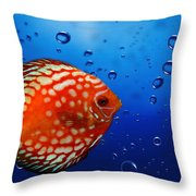 Discus Fish Throw Pillow