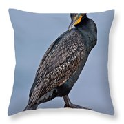 Double Crested Cormorant Throw Pillow