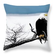 Elegance In The Morning Throw Pillow