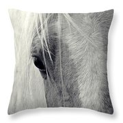 Equine Study Throw Pillow