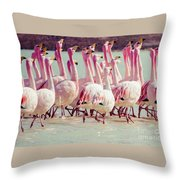 Flamingos On Lake In Andes Throw Pillow