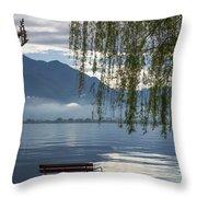 Flooding Lake Throw Pillow