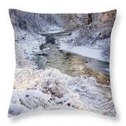 Forest Creek After Winter Storm Throw Pillow