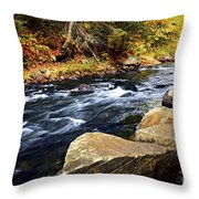 Forest River In The Fall Throw Pillow