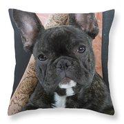 French Bulldog Puppy Throw Pillow