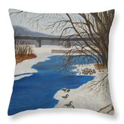 Geese On The Grand River Throw Pillow
