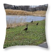 3 Geese Throw Pillow