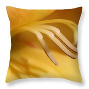 Gladiolus Named Halloween Throw Pillow