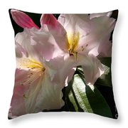 Glowing Pink Throw Pillow