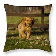 Golden Retriever Pup Throw Pillow by Linda Freshwaters Arndt
